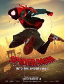 Spider Man : Into the Spider-Verse